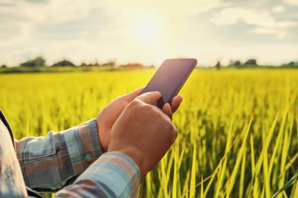 Belgo cria aplicativo que calcula área de cerca e facilita vida de Produtor Rural