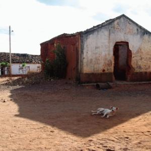 Guaribas no Piauí será exibido em amostra nacional