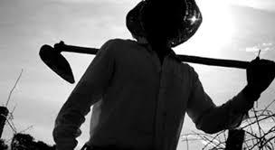 Sindicato dos Trabalhadores Rurais convida todos que tenha Dap's para regularização em Cristino Castro