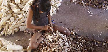MPT lança plataforma com informações sobre trabalho infantil