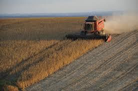 Brasil tem agricultura mais produtiva nas últimas décadas.